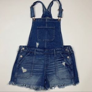 Vintage Hollister Retro Overall Denim Jean Pants